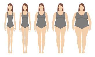 Body mass index vectorillustratie van ondergewicht tot extreem obesitas. Vrouwensilhouetten met verschillende zwaarlijvigheidsgraden. Gewichtsverlies concept.