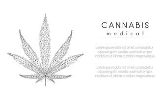 Medische cannabis. Marihuana-blad. Ontwerp met lage polystijl.