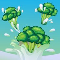 broccoli splash vector