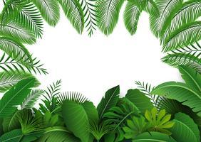 Achtergrond van tropische bladeren. Geschikt voor natuurconcept, vakantie en zomervakantie. Vector illustratie