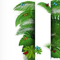 Bord met tekst ruimte van tropische bladeren en vlinders. Geschikt voor natuurconcept, vakantie en zomervakantie. Vector illustratie