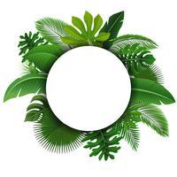Ronde bord met tekst ruimte van tropische bladeren. Geschikt voor natuurconcept, vakantie en zomervakantie. Vector illustratie