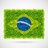 vlag van Brazilië gras vector