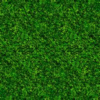 groene voetbal gras textuur vector