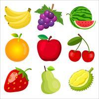et van schattige 9 kleuren platte vruchten icoon collectie geïsoleerd op een witte achtergrond voor kinderen het leren van de Engelse woorden en woordenschat. Vector illustratie.