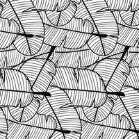 Tropische Patroonachtergrond. Hand getrokken vectorillustratie.