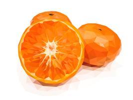 Oranje, een van de Chinese, veelbelovende vruchten