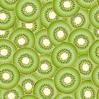 Kiwi stuk naadloze achtergrond. vector