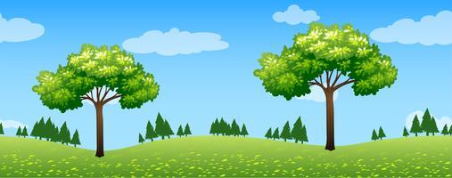 Naadloze scène met bomen in park vector