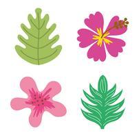 Bloemen en bladeren vector
