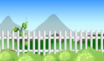Scène met hek en tuin