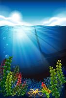 Scène met blauwe zee en onderwater