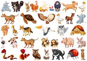 Set van dierlijke karakter