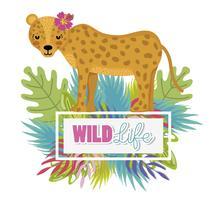 Leuke dieren in het wild dieren tekenfilms vector