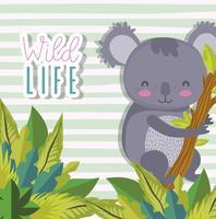 Leuke dieren in het wild dieren tekenfilms