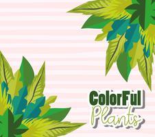 Kleurrijk plantenontwerp