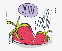 Detox en vers fruit vector