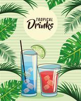 tropische cocktail drinkt poster