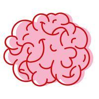 menselijk brein anatomie tot creatief en intellect vector