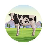 Koe boerderij dier vector