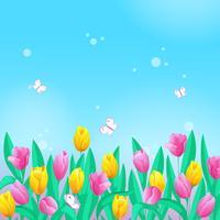 Illustratie met een rand van tulpen, lucht en vlinders.