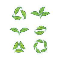 Set van vector bladeren