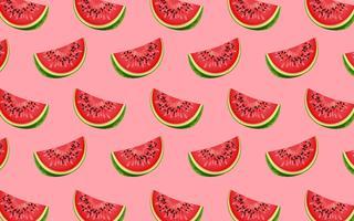 Watermeloenpatroon vector