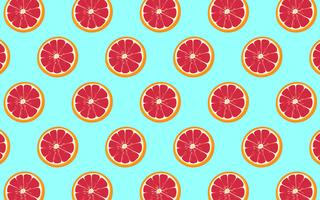 Grapefruit Patroon vector