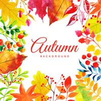 Multi-colored Mooie Waterverf Autumn Leaves Background vector