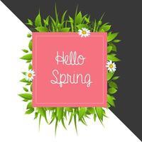 Kleurrijke bloemen Hallo lente achtergrond