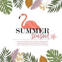 Flamingo zomer kaart ontwerp