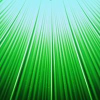 Bottom-up weergave gras naar blauwe hemel vector