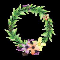 kleurrijke bloemframes en bladeren in aquarelstijl vector