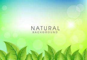 Natuurlijke achtergrond met groene bladerenachtergrond