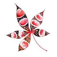 Tribal Autum blad aquarel