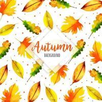 Veranderend herfstverlof patroon