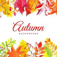 Kleurrijke Herfstbladeren Achtergrond