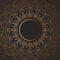Tribal mandala ontwerp vector