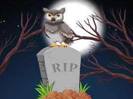 Een uil op grafsteen in de nacht