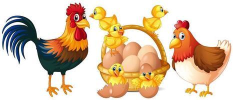 Kippen en kleine kuikens met mand met eieren vector