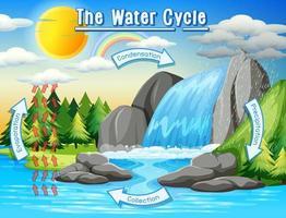 Watercyclusproces op aarde - Wetenschappelijk vector