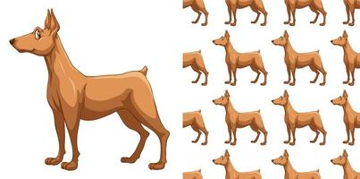 Naadloos en geïsoleerd doberman hondpatroon vector