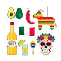 cinco de mayo evenementviering vector