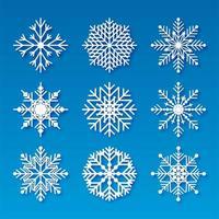 Decoratieve Kerstmissneeuwvlokken decorontwerp elementen