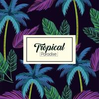 tropische label en bladeren planten achtergrond