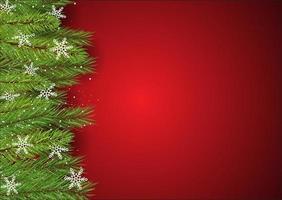 Kerstmisachtergrond met de takken en de sneeuwvlokken van de pijnboomboom