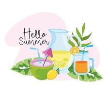 kokosnoot met limonade en jus d'orange in de zomer vector