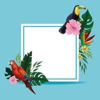 Zomer tropische lege kaart frame vector