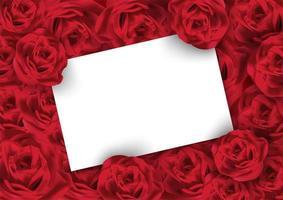 Valentijnsdag roos achtergrond met witte lege kaart vector