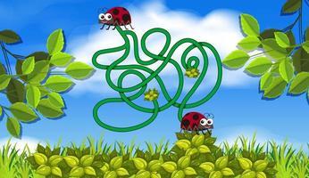lady bug doolhof concept vector